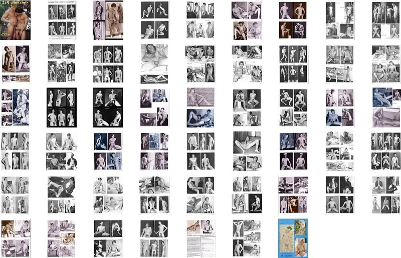 screenshot of photos from male vintage erotic magazine