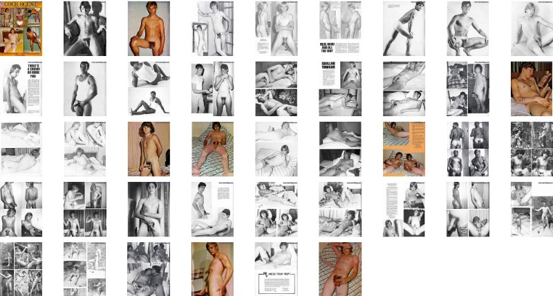 screen shots of male vintage erotic magazine